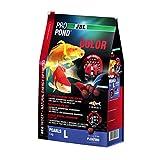 JBL 4131600Color Forro Koi, Nadando Forro Perlas, Forro Especial, propondcolor, tamaño L, 5000g