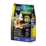 JBL 4123300Verano Forro Koi, Nadando Forro Perlas, Temporada Forro, propond Summer, tamaño L, 4100g